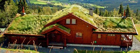 stor-hytte-n-r002.jpg
